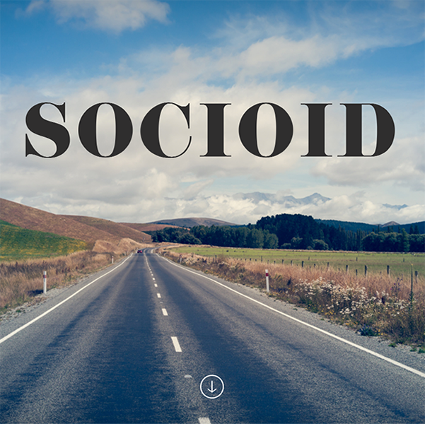 SocioId Website